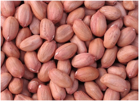 Groundnuts1